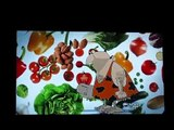 Robb Wolf & Arthur De Vany- The Paleo Diet (Nightline)
