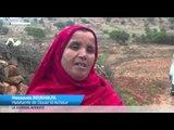 "TV5MONDE : Au Maroc, les ""bleds"" innovent !"