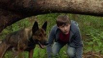 Watch Max (2015) Full Movie HD 1080p