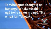 Te Reo: United Nations Declaration on the Rights of Indigenous Peoples