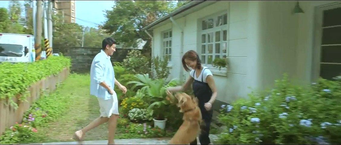 《我的男友和狗》2014 HD720p(主演: 张钧甯/何润东/赖佩霞/丁春诚/薛仕凌)