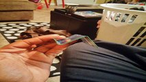 DIY Credit Card Stand for iPhones, iPods, and other Mobile Phones
