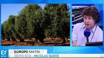 Maladie de l'olivier, que fait l'Europe ?