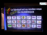 Lancement Télévision numérique terrestre (TNT) : une transition à plusieurs vitesses
