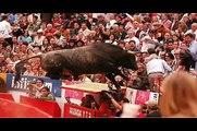 Critica a las corridas de Toros,tauromaquia