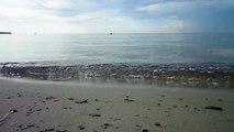 Merevaade ja -hääled   Roondla rand