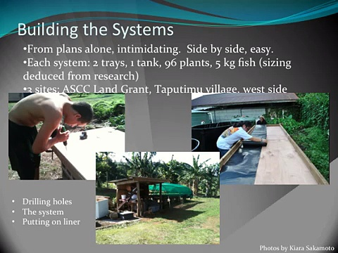 Adapting Aquaponics for use in the Pacific Islands: American Samoa. Year 1 Final Report