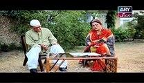 Behnein Aisi Bhi Hoti Hain Episode 246 on Ary Zindagi in High Quality 18th June 2015