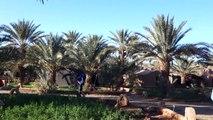 Desert trekking in the Moroccan Sahara