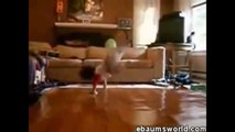 funny babies dancing and singing   funny kids dancing funny comercials funny babies commercials