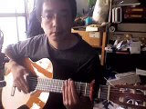 Fingerstyle Guitar Lesson - The Boxer - video dailymotion