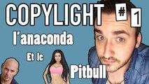 Copylight #1 - L'anaconda et le Pitbull