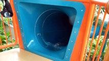 Center Parcs Les Trois Forêts Hattigny - Water Play House Röhrenrutsche Onride