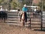 craig camron extreme cowboy race application video