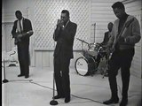 Hound Dog Taylor & Little Walter - Wild About You