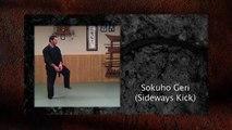 Ninja Training: Kicking - Keri Demonstration, 8th Kyu, Ninjutsu, Bujinkan
