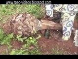 Ewé SODABI ( EWE ( TOGO-GHANA-BENIN) WHISKY. Boisson alcoolisée. 100% vol.)