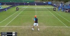 Gatto entra in campo da tennis