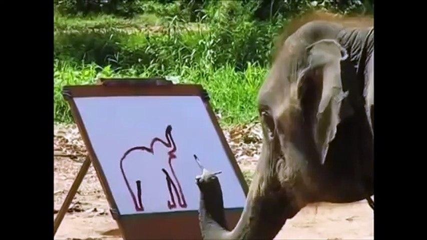 ELEFANTE PINTOR animales increibles | Godialy.com