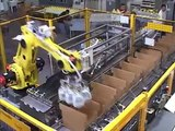 Thiele Robotic Case Packer  with Case Erector