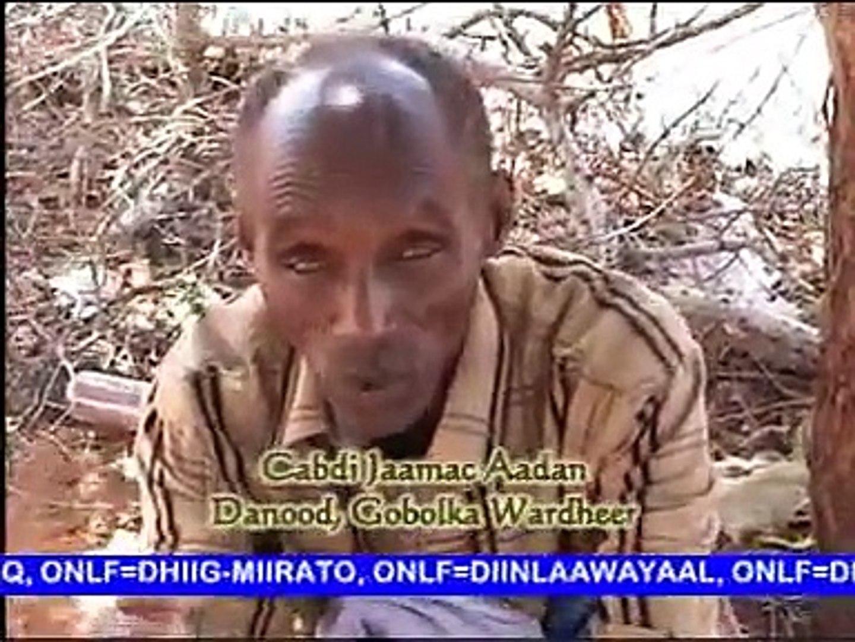 ONLF Attack On Wardheer & Danood Makaahiil Ogadens