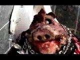 délire des puppet maztaz 3