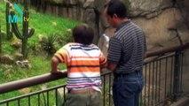 Ven y descubre el Zoológico de Chapultepec, Bienestar y Vanguardia.