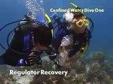 PADI Scuba Diving Lessons: PADI Open Water Skills-Reg Recover