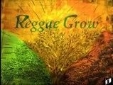 BARRINGTON SPENCE  -  REGGAE DOCIOUS - Reggae