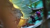 Sea Shepherd's Operation Infinite Patience: The Cove Guardians expose Taiji