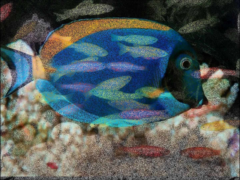 Fish Aquarium!