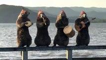 Bel été sur France 3 avec les marmottes péruviennes / été 2015
