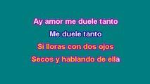 Shakira Ft. Alejandro Sanz - La Tortura - Karaoke Version