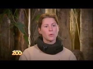 Une saison au zoo - Episode 9 (Saison 3)