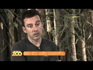 Une saison au zoo - Episode 12 (Saison 2)
