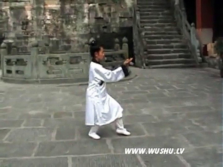 Wudang taichi2