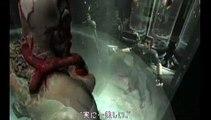 Biohazard The Umbrella Chronicles: Trailer 4