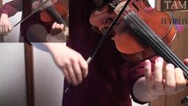 FINAL FANTASY XIII-2 Battle Theme / FF13-2 戦闘音楽 / FF VIOLIN Remix:TAM