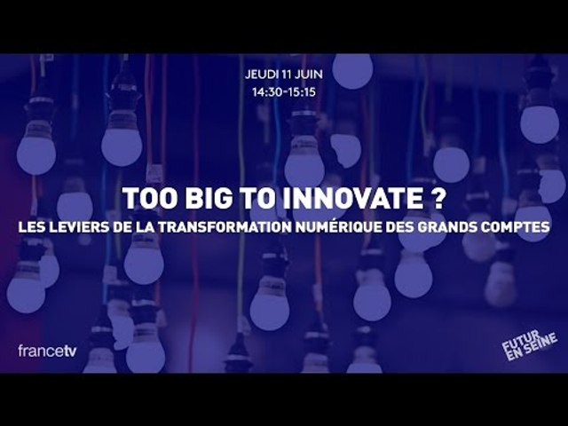 Too Big to Innovate (1) : Keynote by Augustin de Romanet (Futur en Seine 2015)