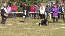 Hermine Championnat Cavage 2015