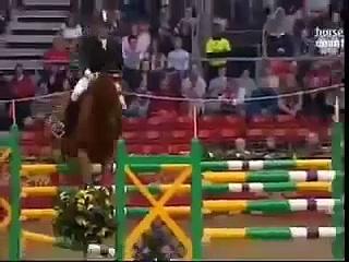 Horses- Iris
