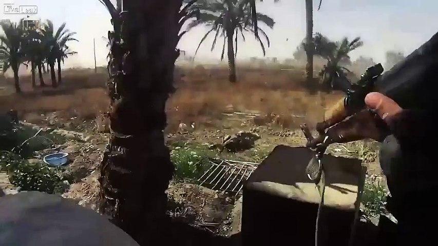 daesh Killing People