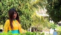 Bangla New Song 2015  By  Imran & Nancy    Pakhir Dana