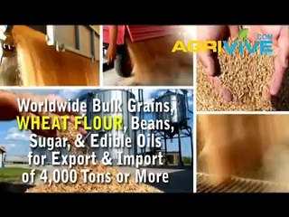 Wheat Flour Import, Wheat Flour Import, Wheat Flour Import, Wheat Flour Import, Wheat Flour Import, Wheat Flour Import,