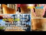 Buy USA Bulk Wholesale Bulk Wheat Flour, Bulk Wheat Flour, Bulk Wheat Flour, Bulk Wheat Flour, Bulk Wheat Flour, Bulk Wh