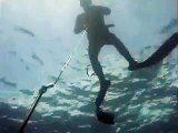 spearfishing 39.2kg Kingfish @ White Island, NZ