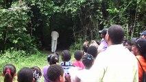 Community Baboon Sanctuary Tour with Robert Pantin