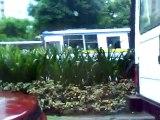 AYALA AVE  PASEO DE ROXAS AVE  &MAKATI AVE  Makati City,PHILIPPINES2009
