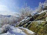 Paisajes Invernales en Requeixo