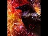 Corvus Corax A.K.A. The Common Raven Remix.